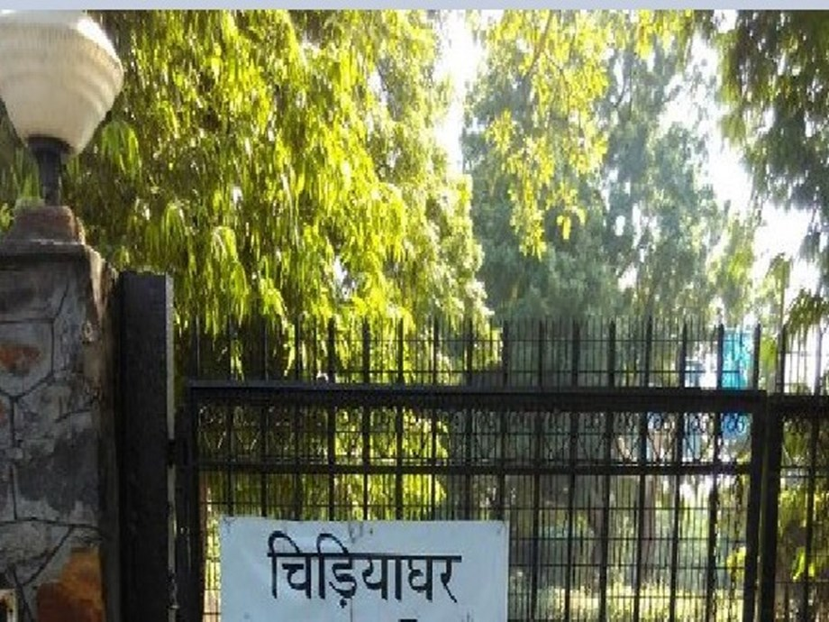 Delhi zoo: CZA recommends capacity-building programme for 'demotivated' animal keepers