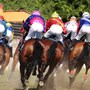 Horse racing-Activists call for halt to U.S. horse racing