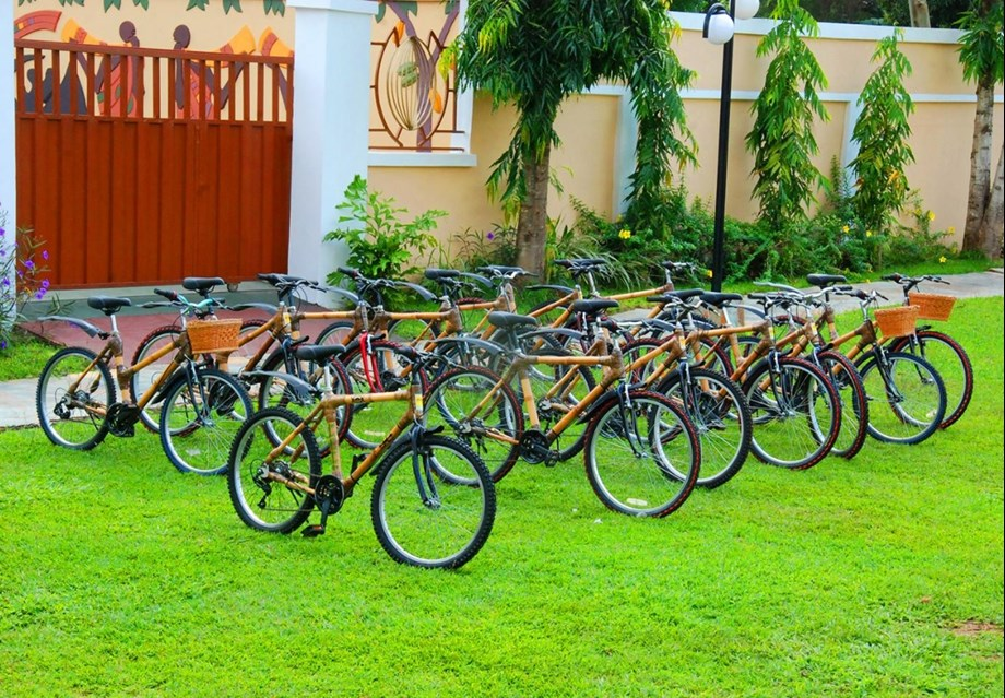 Project of making bamboo bicycles in Ghana on agenda at World Economic Forum on Africa