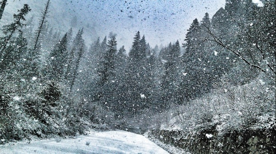 Met forecasts rain, snow in Jammu and Kashmir in next 24 hours