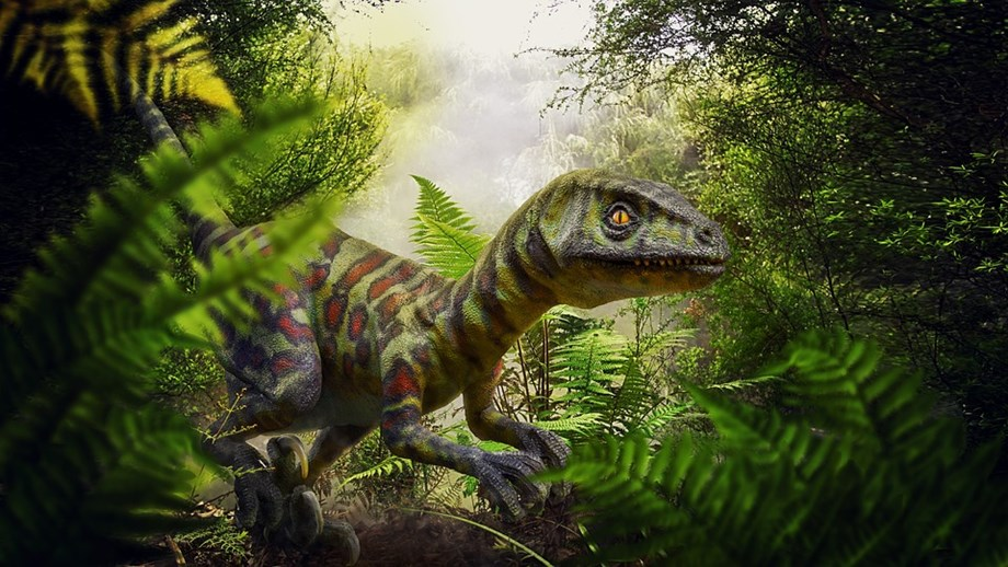 World's earliest known dinosaur eggs reveal new information about their evolution