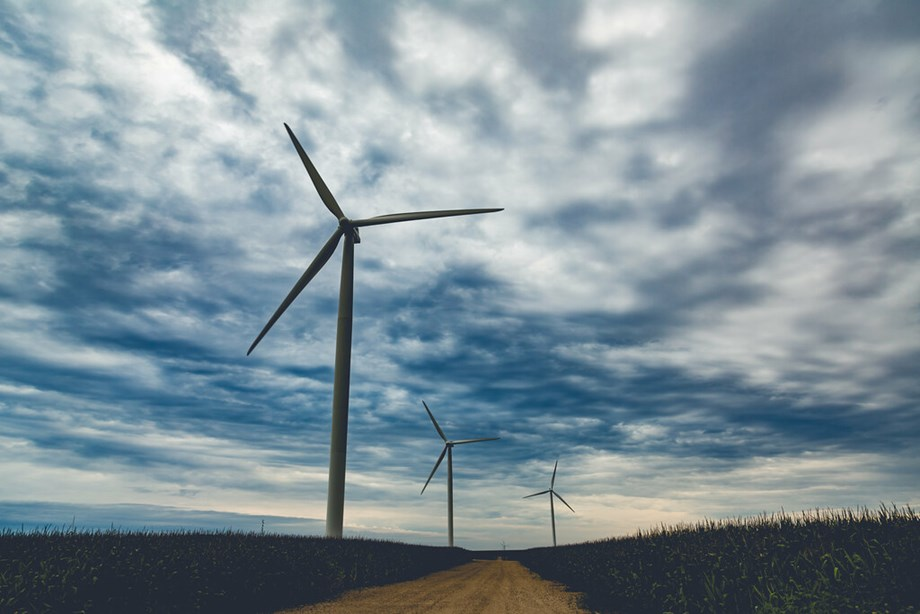 Rajasthan government to form policy for new and renewable energy; 1,426  MW wind power plant proposed: Gehlot