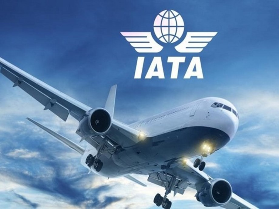 September air freight volumes globally remain weak: IATA
