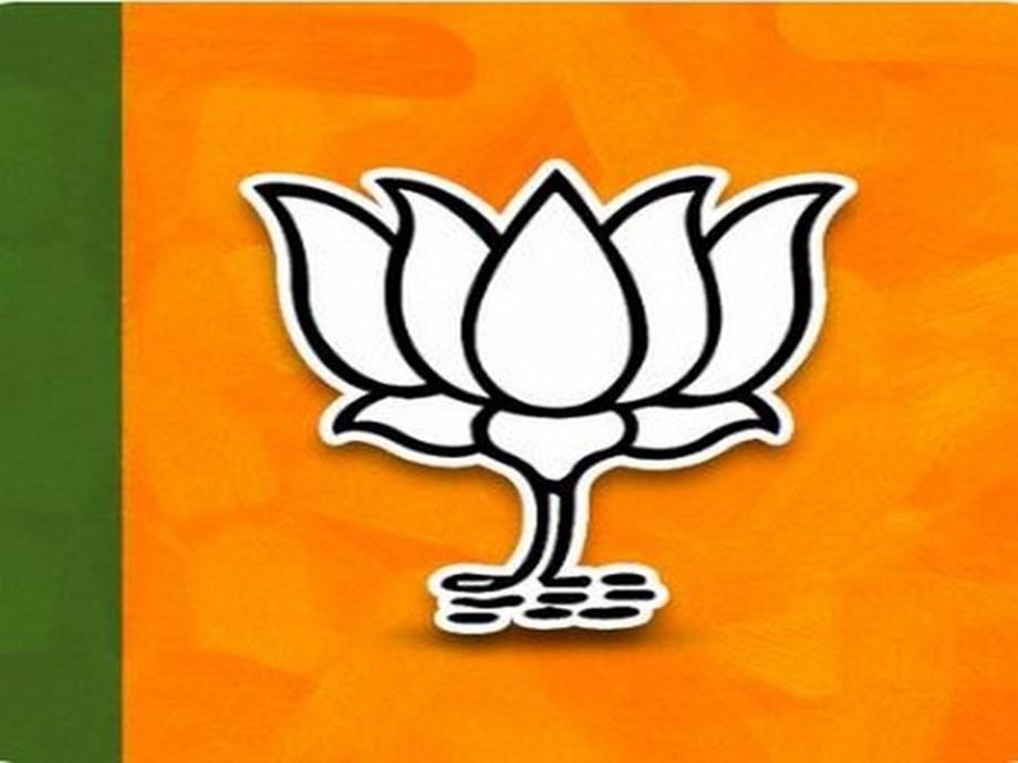 Daman-Diu BJP chief quits over video clip