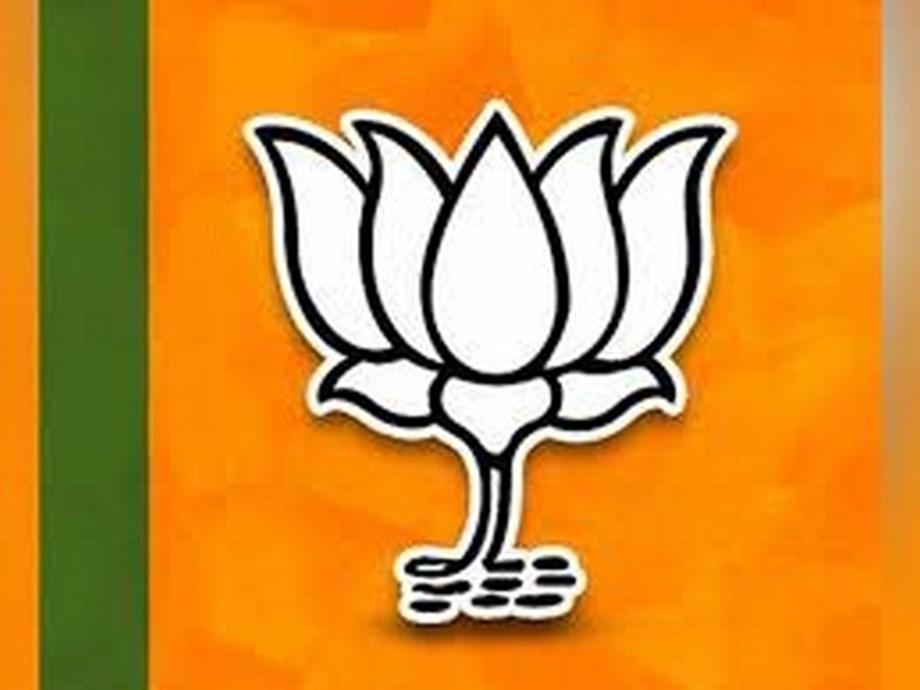 BJP activist held for objectionable social media post
