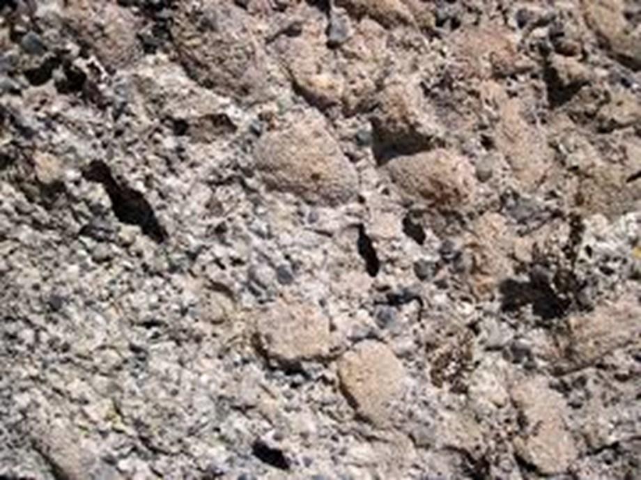 Fossils of oldest member of huge dinosaur group found in Argentina - Devdiscourse