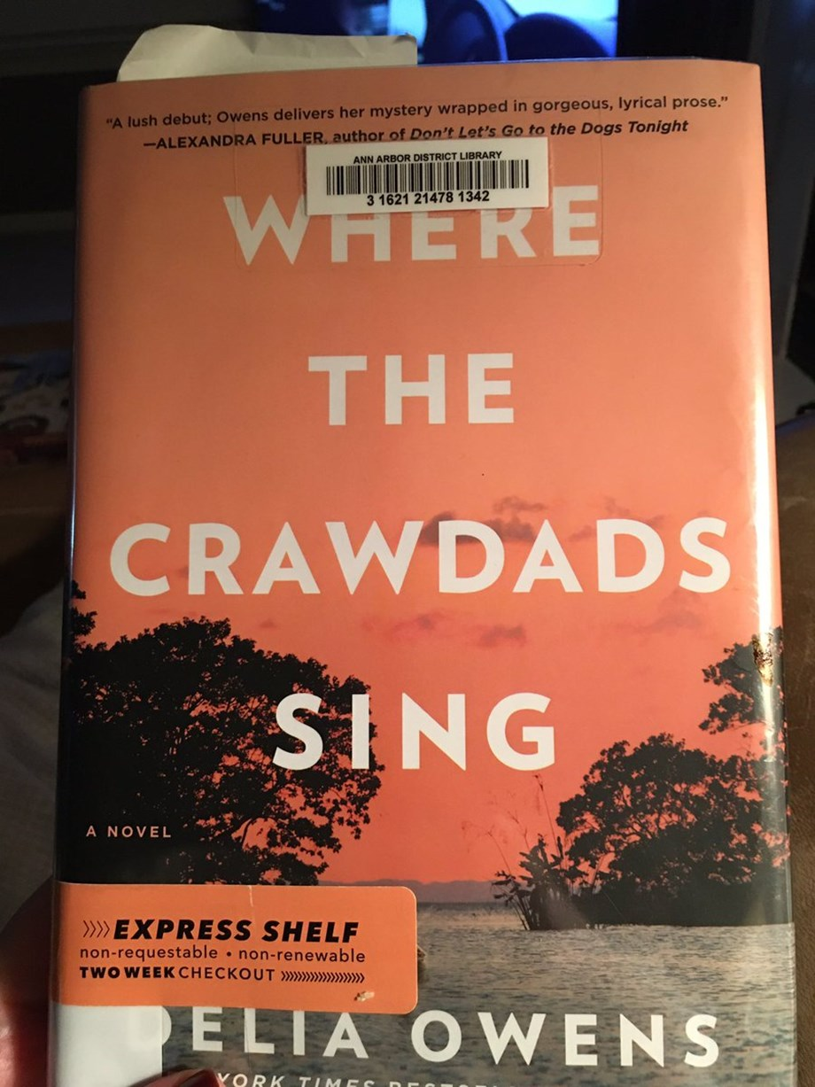 Delia Owens novel 'Where the Crawdads Sing' is set to feature film adaptation