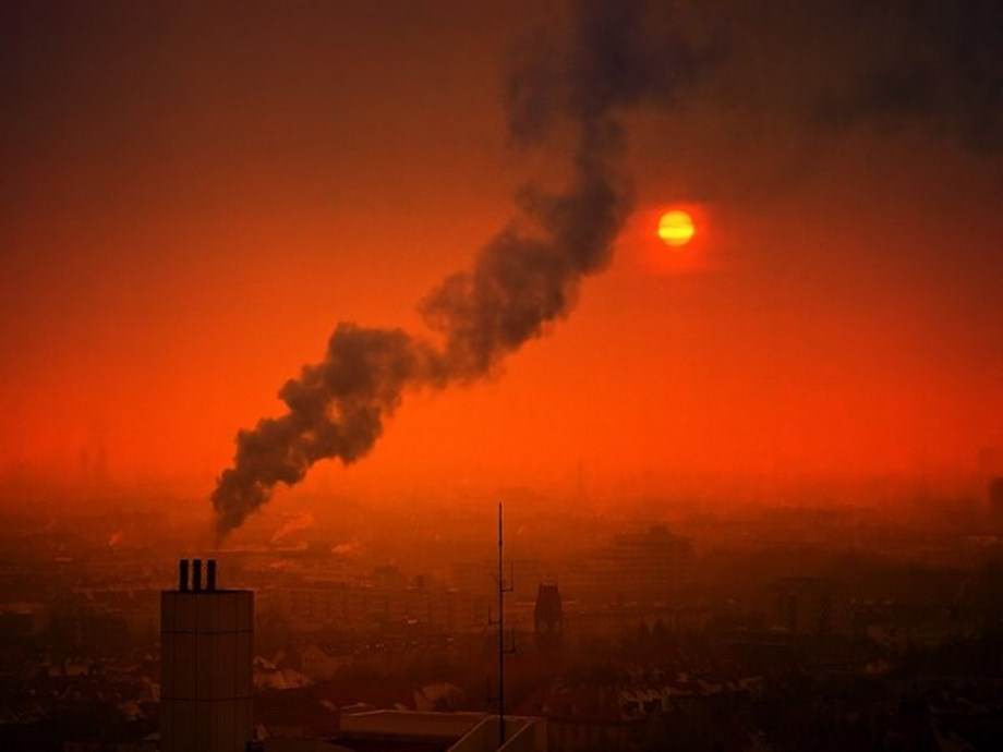 Detrimental effects of pollution can be passed on to next generations: Study