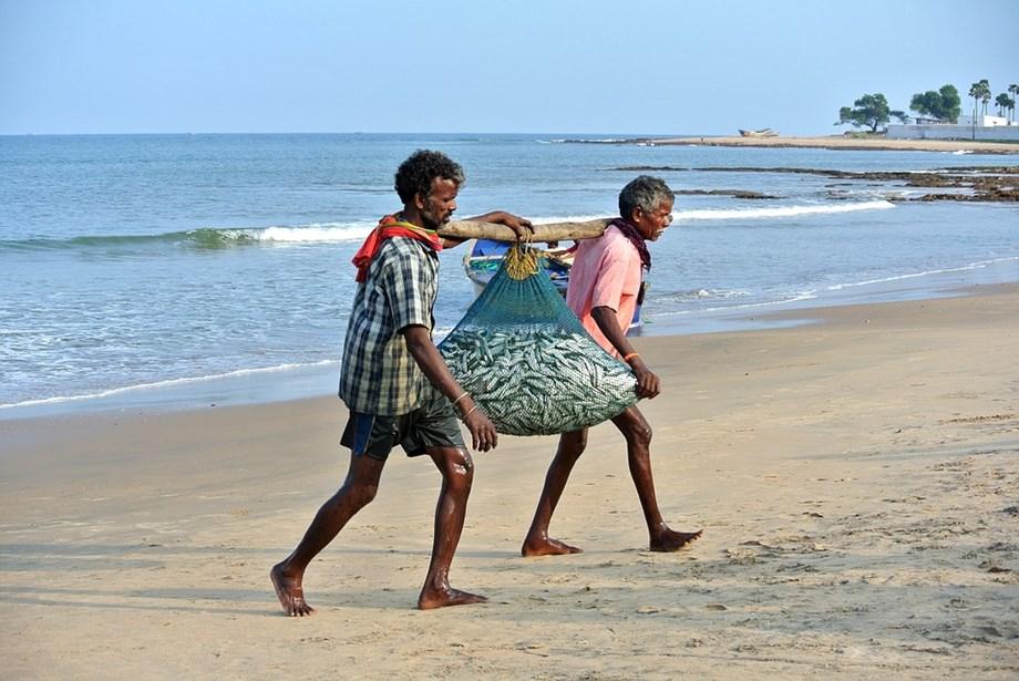 In view of breeding season 61 day ban starts on fishing along Tamil Nadu coast