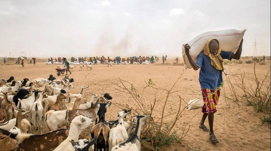 UN says El Nino event might disrupt global weather