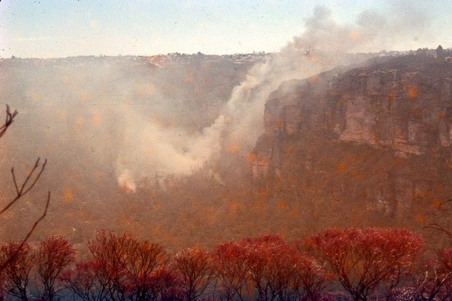 UPDATE 1-Dangerous conditions fuel bushfires across southeast Australia