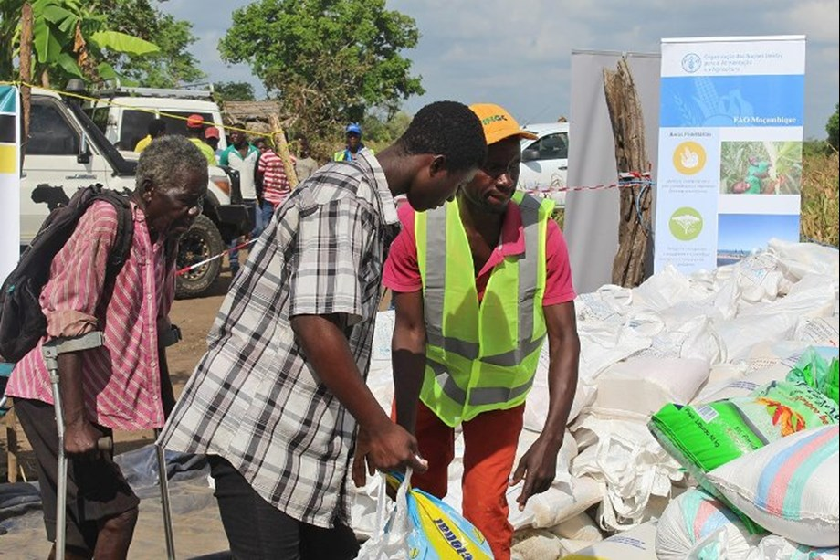 Mozambique: FAO distributes agricultural kit to ensure farmers can plant crops