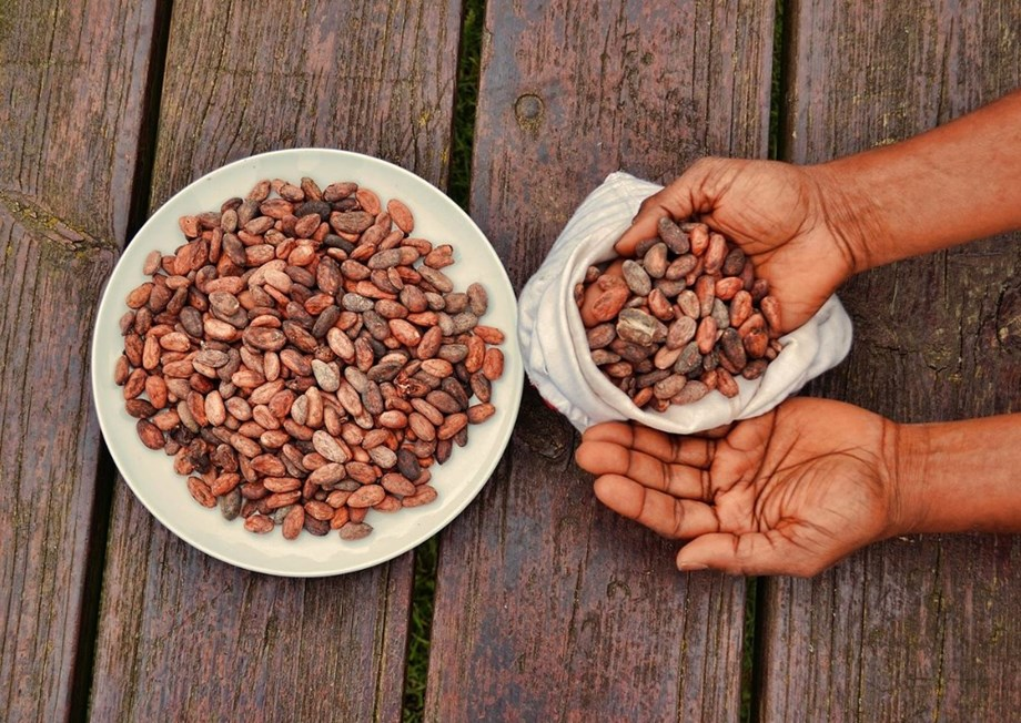 CORRECTED-UPDATE 1-Ivory Coast, Ghana add 'living income' cocoa premium to fight poverty