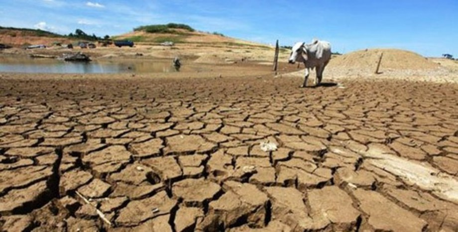 ANALYSIS-Climate change opens up 'frontier' farmland, but at what cost to the planet?