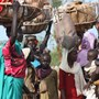 More relief efforts needed to respond to humanitarian needs in Burkina Faso