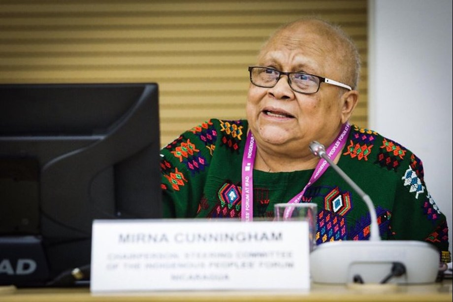 Indigenous Peoples Forum supports IFAD in working policy's principles into action
