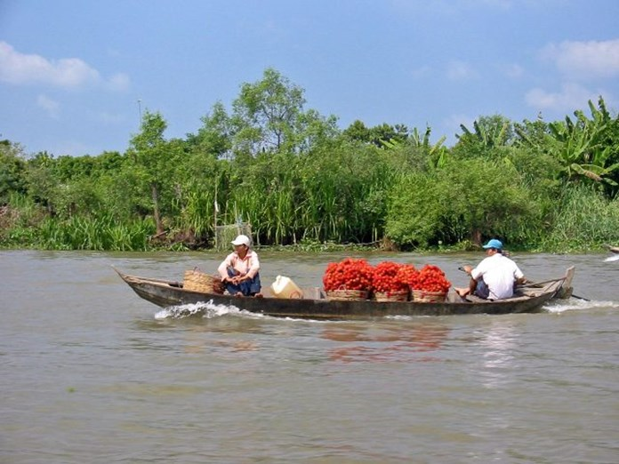 Mekong Delta undergoing rapid pace of erosion due to extensive mining, damming