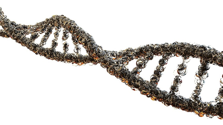 Scientists study 70 new genes to solve biological cause of mental health disorders