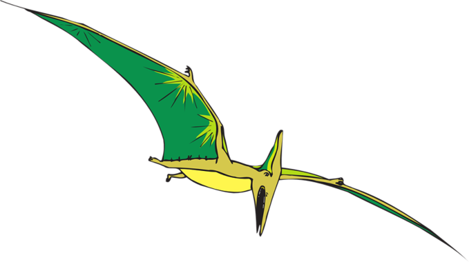 Baby pterodactyls could fly from birth