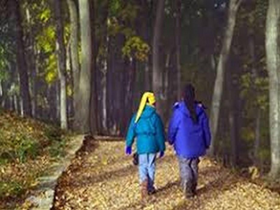 Spending two hours a week in nature may boost health