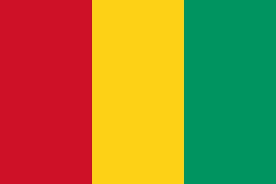 Protesters take to streets in tense Guinea capital