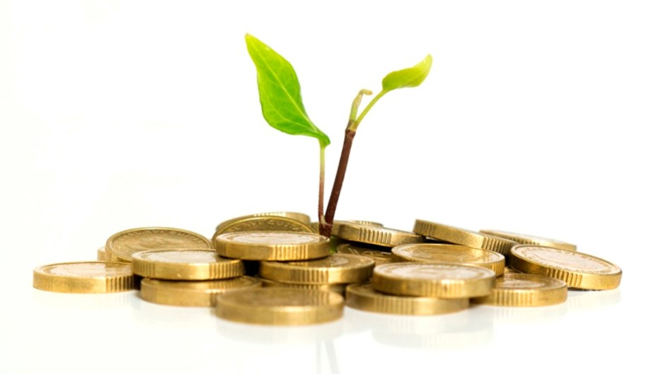 Investing in Mutual Funds: Why Regular is Better than Direct Plan