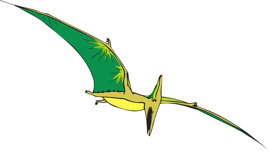 Researchers unearth new species of flying dinosaur