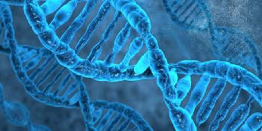 Chinese researcher claims world's first genetically edited babies