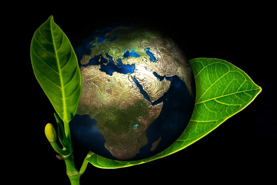 NASA study reveals 'India and China leading in greening on land'