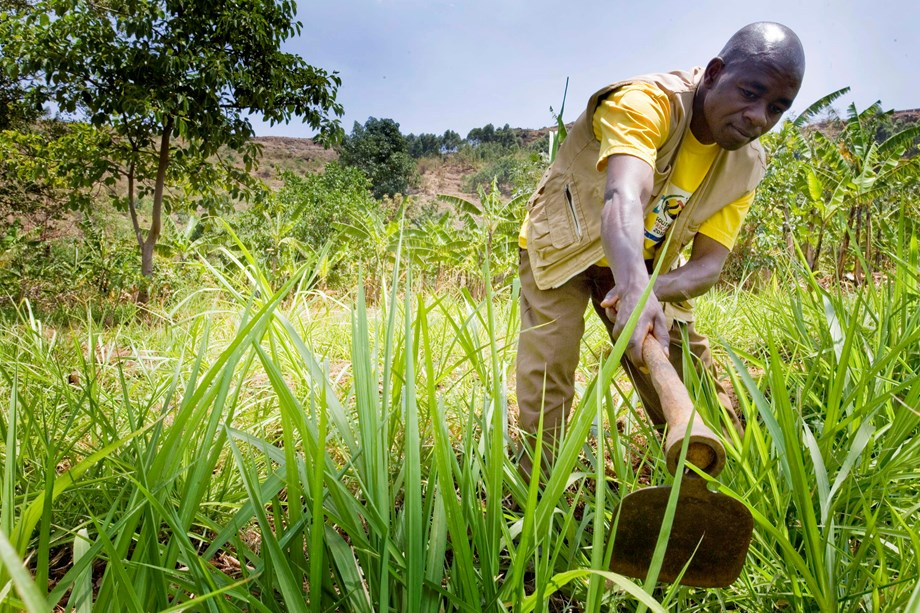 How one mobile service changing farmers distress in Africa