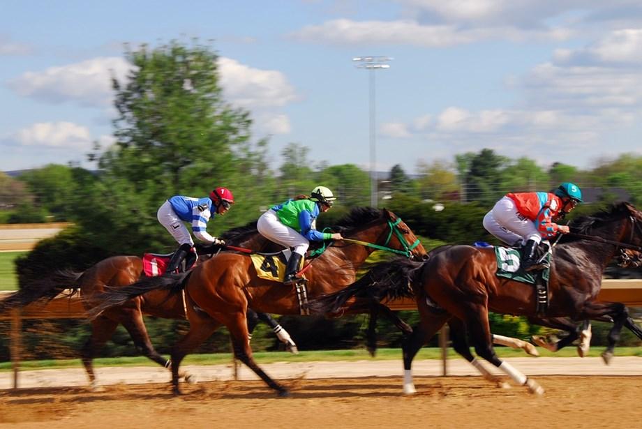 Women jockeys bag four wins at Cheltenham