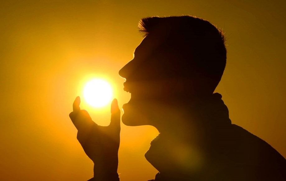 Large doses of Vitamin D improves memory but slows down metabolic reactions