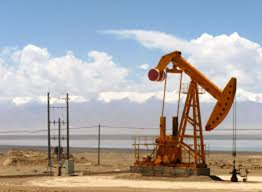 Expert panel appointed for land acquisition issues of Ratnagiri oilo