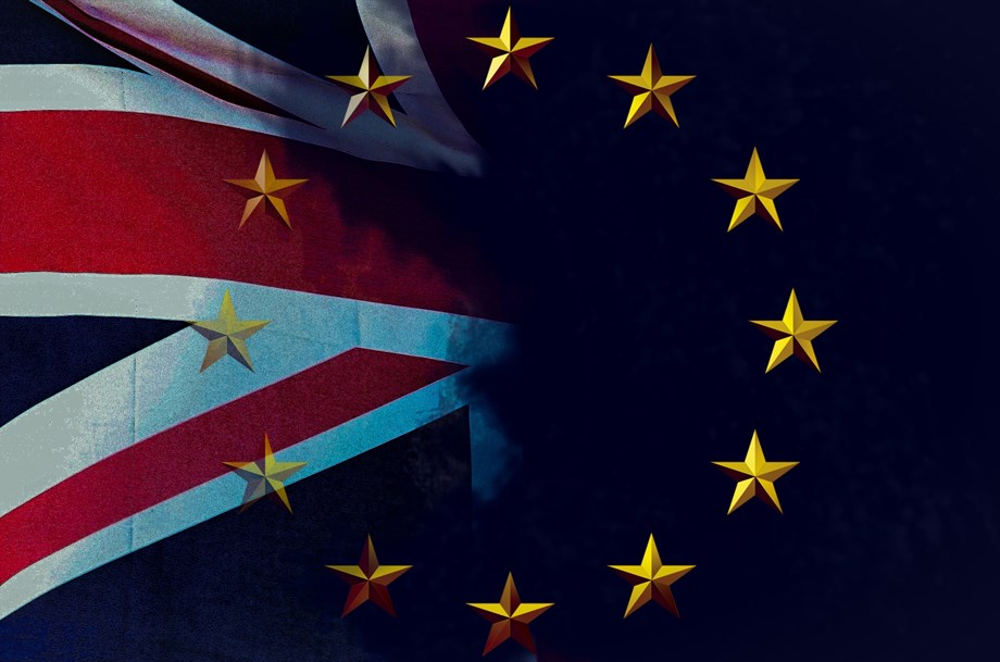 UK probably would hold fresh referendum on EU membership: Brexit campaigner