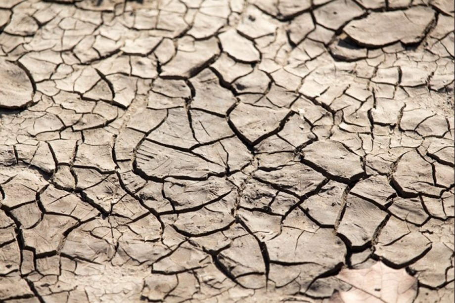 Drought major obstacle in mitigating climate change: UNCCD