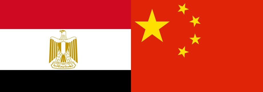Egypt needs Chinese assistance to develop in varied sectors, cites Egyptian translator