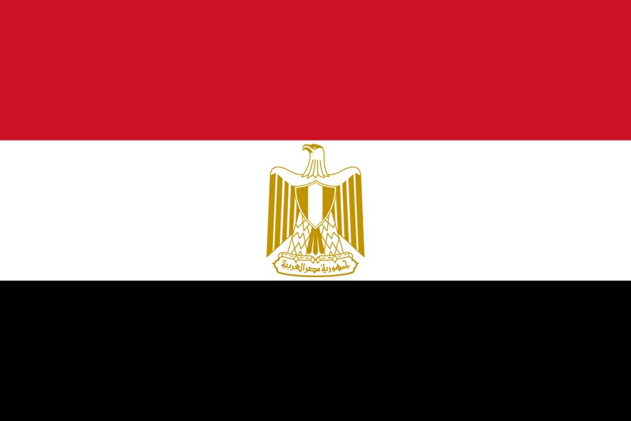 Independent Egyptian news website says its offices were raided