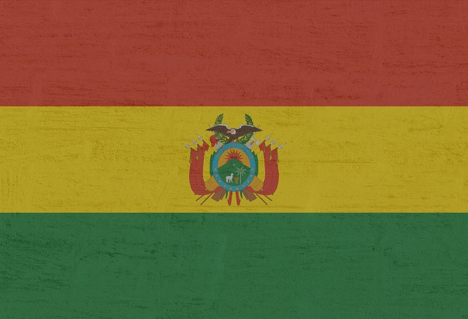 Bolivian armed forces orders operations to 'neutralize' armed groups