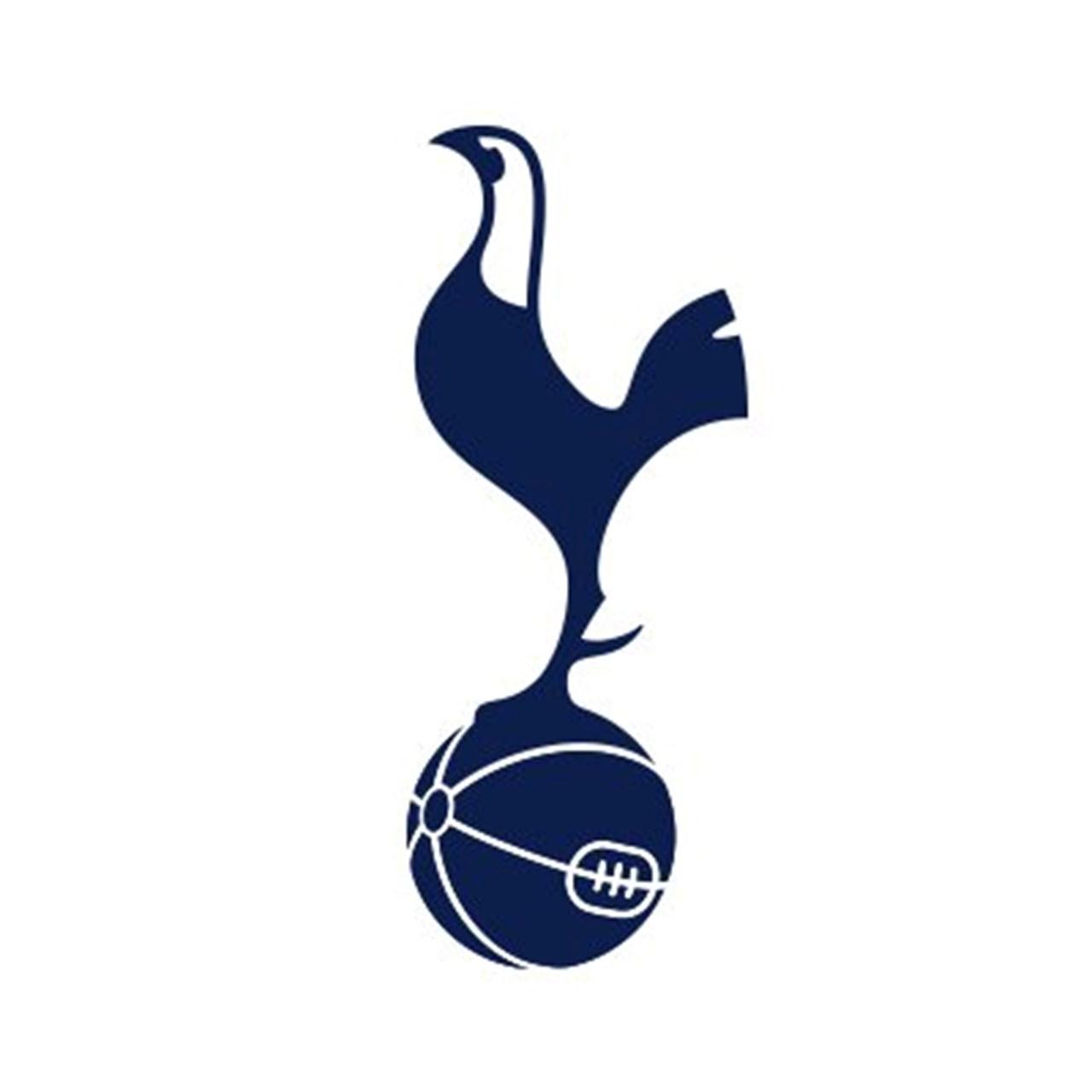 Soccer Spurs Sign Bale On Loan Reguilon On Permanent Deal Sports Games