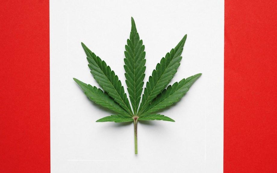 Marijuana intake can adversely affect sperm: Study