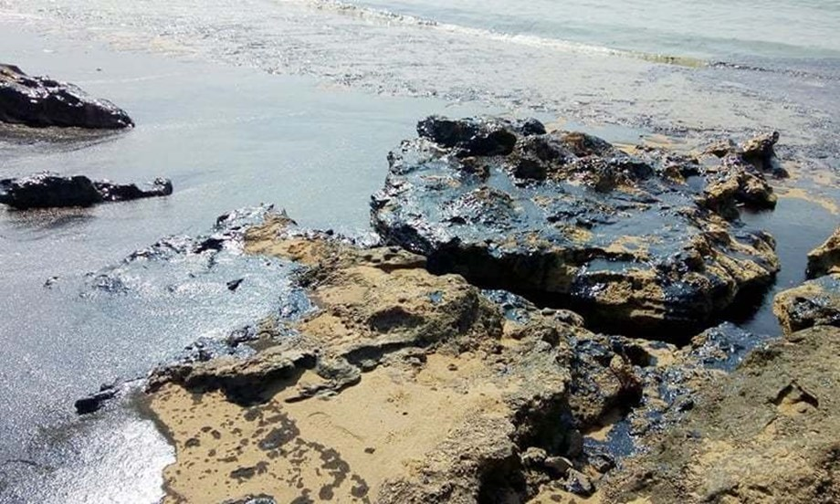 Chinese company tried to escape legal consequences of oil spill by forging evidence