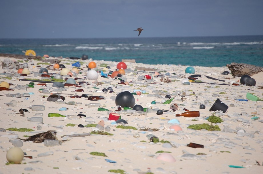 60 to 90 % of the that accumulates on shorelines made up of plastic: UNEP