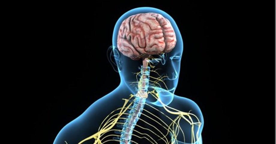 Scientists found pattern of brain activity behind bad mood