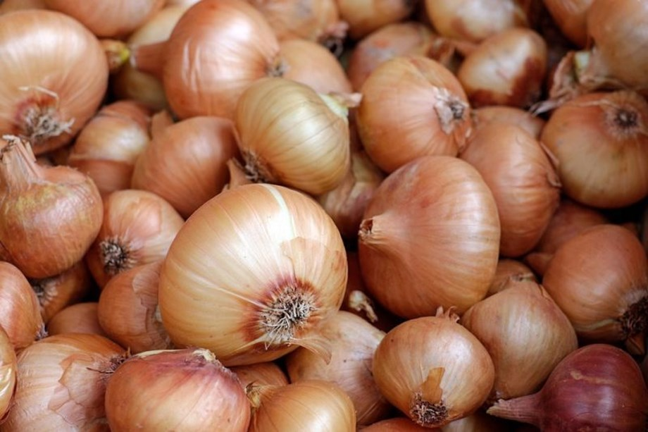 Mother diary to sell onions in 150 outlets, will procure 20 tonnes onion daily