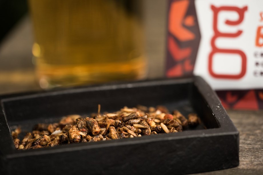 Sainsbury's becomes first British supermarket chain to stock edible insects