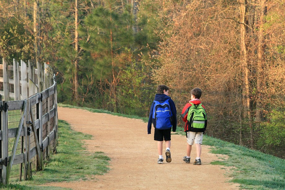 Children living close to nature develop better mental and physical health