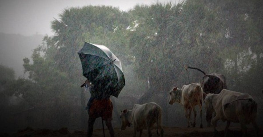 Light rains, hailstorm likely in parts of Rajasthan