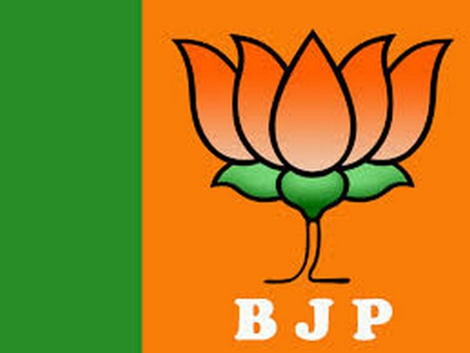 "Enthusiastic BJP workers chant ""Modi, Modi"" during Shah's Bengaluru roadshow"