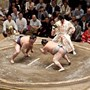 INTERVIEW-'Little Miss Sumo' wrestles sexism in Japan's ancient sport