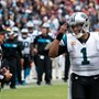 Panthers QB Newton (foot) goes on IR to end his season